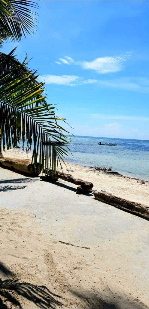 Strand auf Siquijor mit Palmenblatt