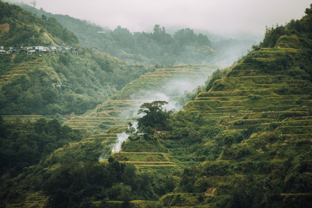 Die beeindruckenden Reisfelder in Nord Luzon mit Nebel ©Philippine Department of Tourism