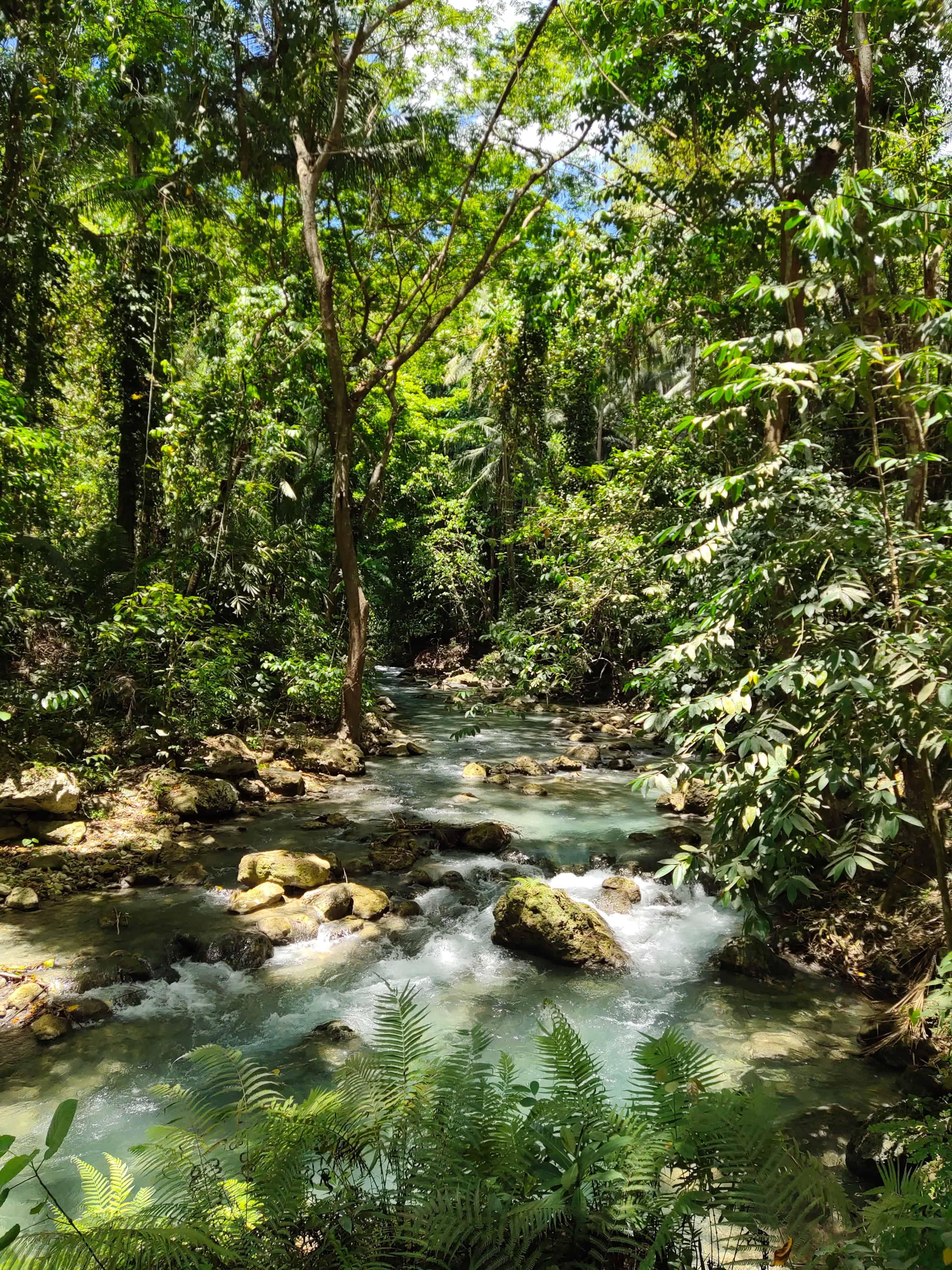 Malerischer Fluss - ©fritz-gabriel-carilo via Unsplash