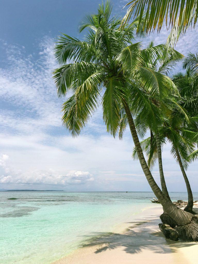 Palmen am Traumstrand Philippinen